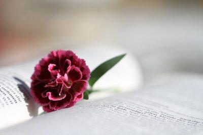 versiculos biblicos sobre el amor de pareja